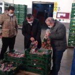 Eğirdir Elmasının yüzde 30'u pazarlandı