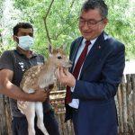 Başkan Gök Hayvanat Bahçesi'nde İncelemelerde Bulundu