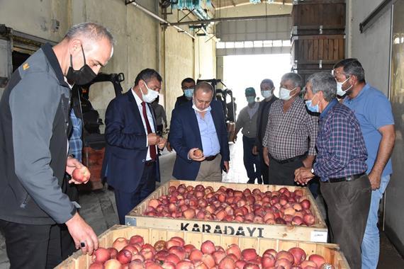 Eğirdir'de 10 Bin Ton Elma Depolarda Kaldı